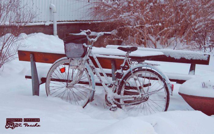 Sepedanya kedinginan pasti tuh :(