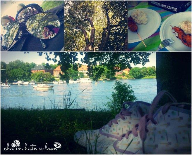 Summer Picnic 2013