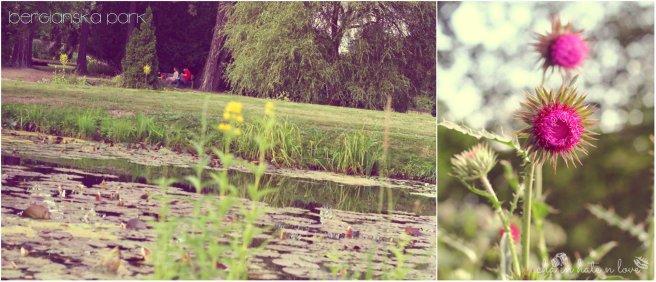 Danau di depan taman