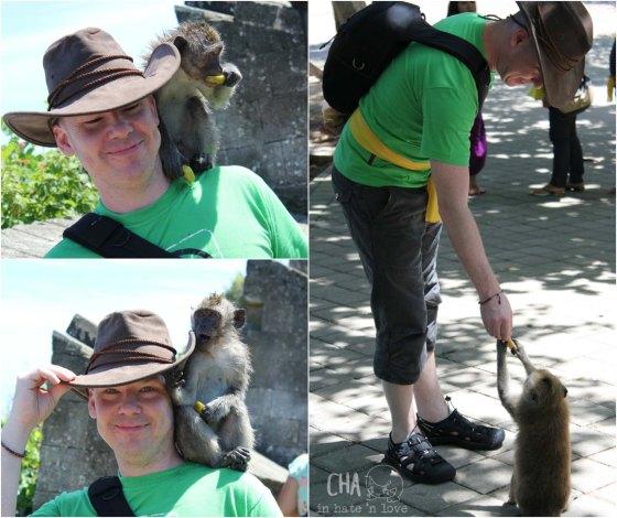 ramah tamah dengan si monyet
