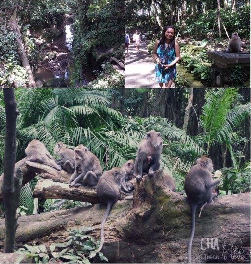 Monyet!! Yang kanan pake baju ijo kebiruan tentu bukan monyet