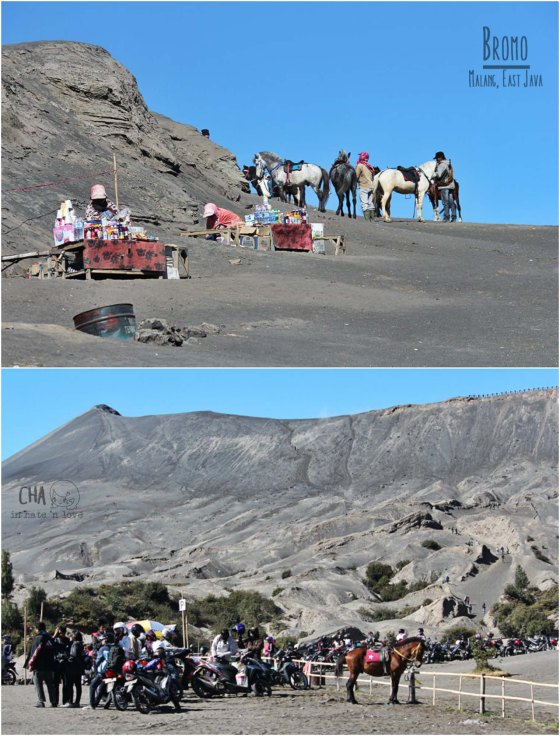 suasana di kaki Gunung Bromo